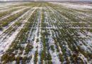 Аграрії Луганщини отримали більше 72 млн грн держпідтримки у 2018 році