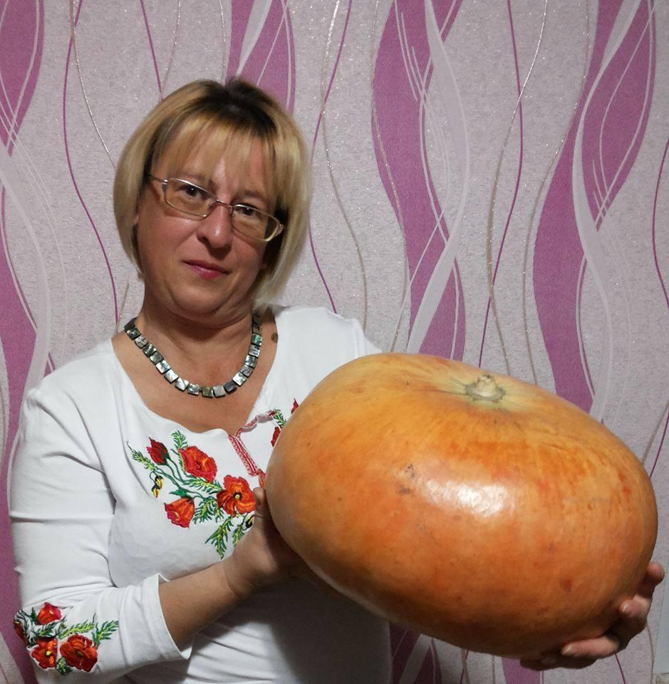 avatar for Олена Степова